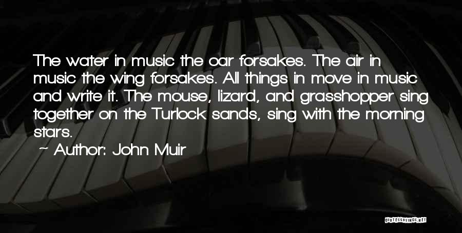 Wish I Could Sing Quotes By John Muir