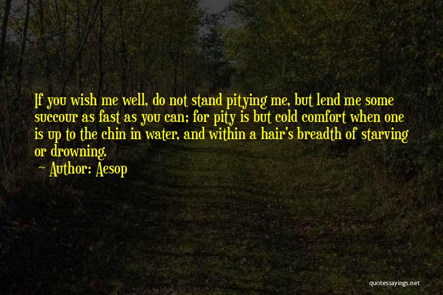 Wish You Well Quotes By Aesop