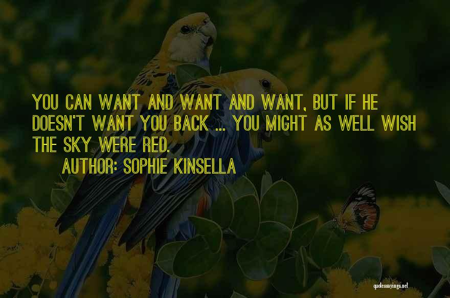 Wish You Well Quotes By Sophie Kinsella
