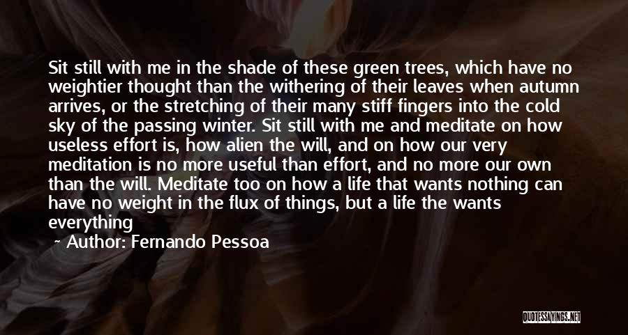 Withering Trees Quotes By Fernando Pessoa