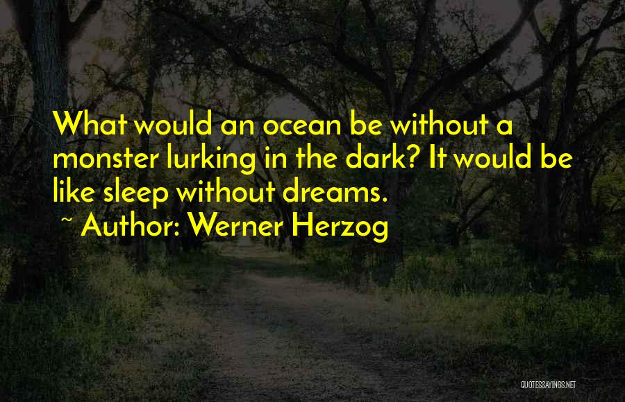 Without Sleep Quotes By Werner Herzog