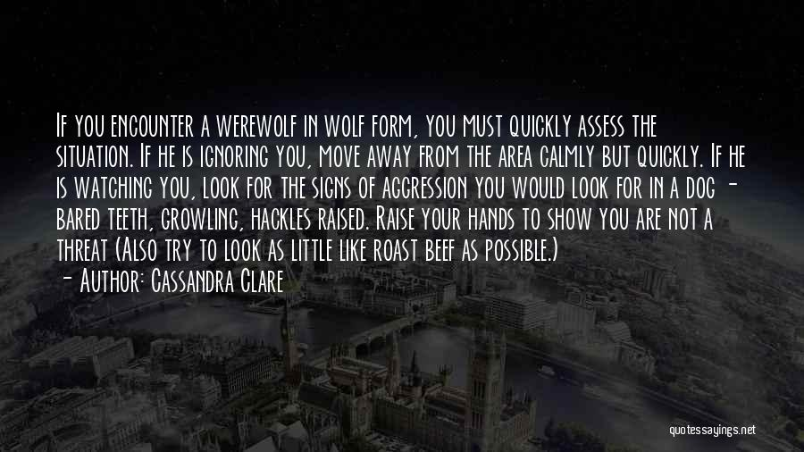 Wolf O'donnell Quotes By Cassandra Clare