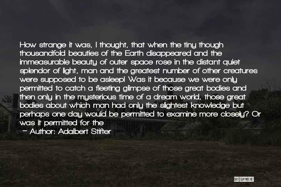 Wonder Man Quotes By Adalbert Stifter