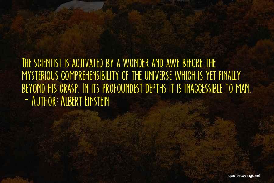 Wonder Man Quotes By Albert Einstein