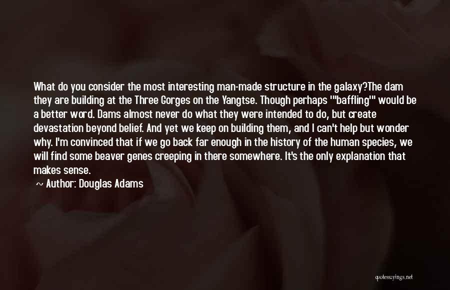 Wonder Man Quotes By Douglas Adams