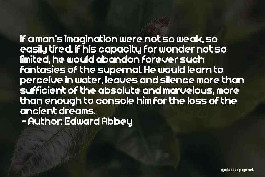Wonder Man Quotes By Edward Abbey