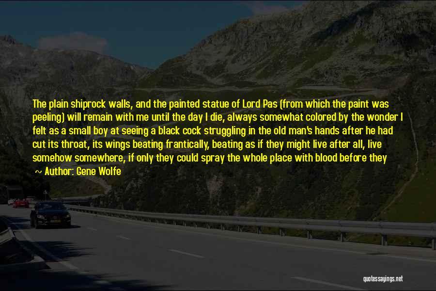 Wonder Man Quotes By Gene Wolfe
