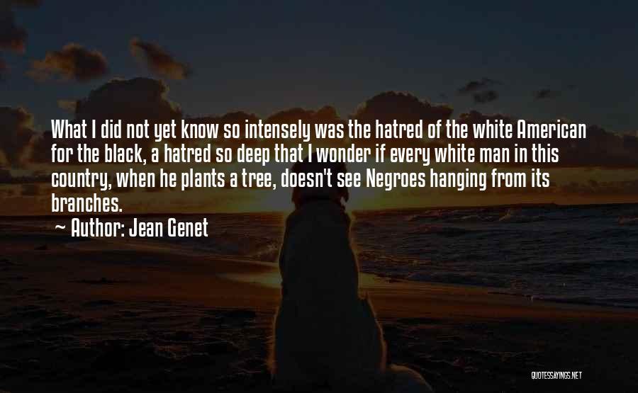 Wonder Man Quotes By Jean Genet