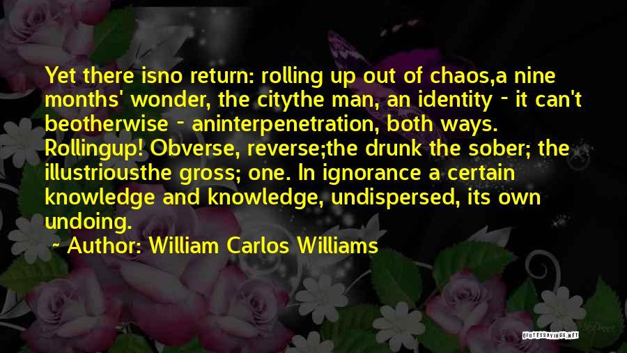 Wonder Man Quotes By William Carlos Williams
