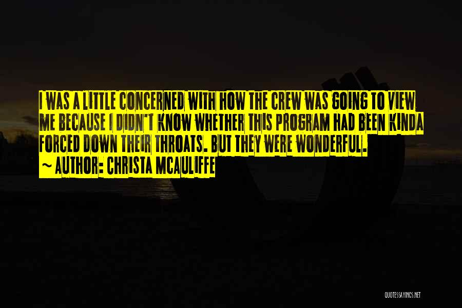 Wonderful View Quotes By Christa McAuliffe