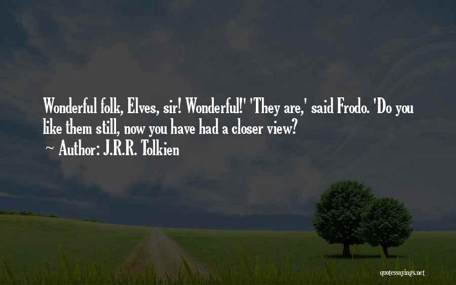 Wonderful View Quotes By J.R.R. Tolkien