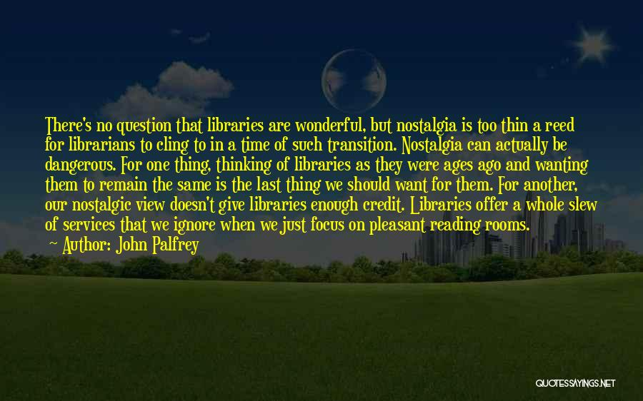 Wonderful View Quotes By John Palfrey
