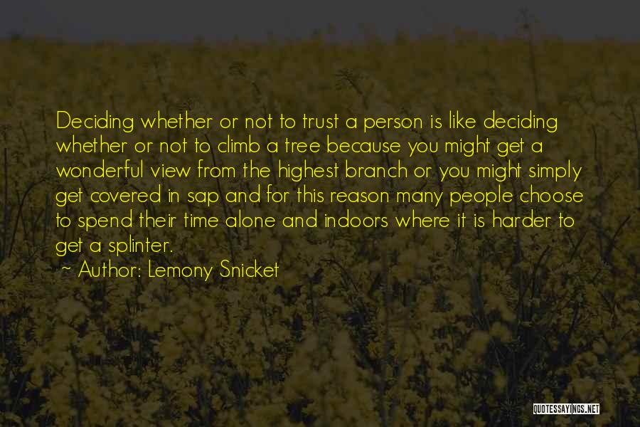 Wonderful View Quotes By Lemony Snicket