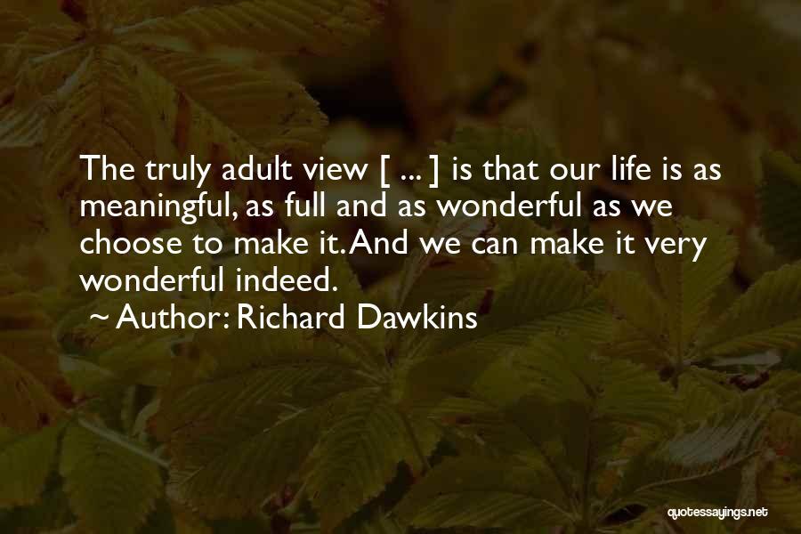 Wonderful View Quotes By Richard Dawkins