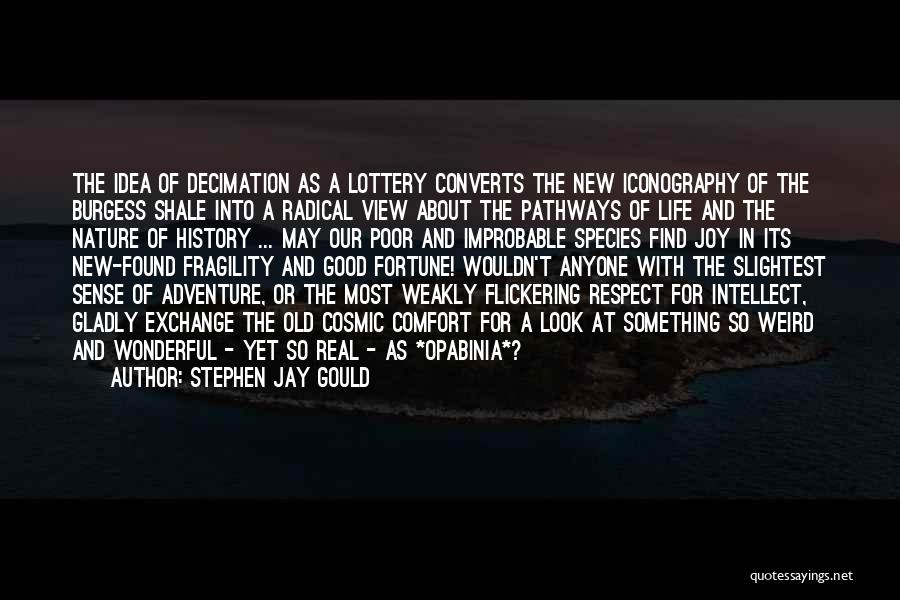 Wonderful View Quotes By Stephen Jay Gould