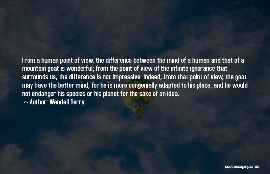 Wonderful View Quotes By Wendell Berry