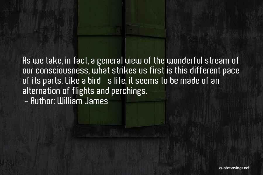Wonderful View Quotes By William James