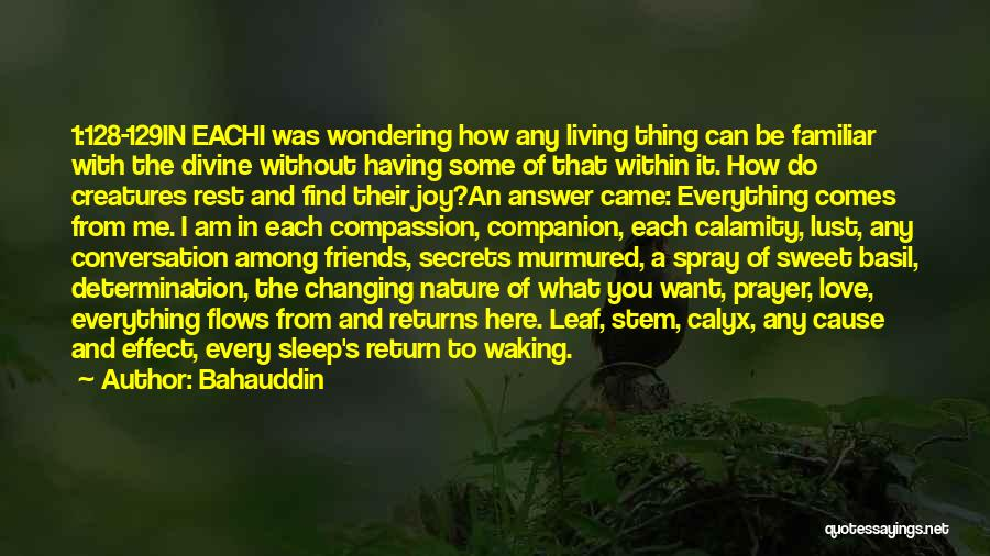 Wondering What To Do Quotes By Bahauddin