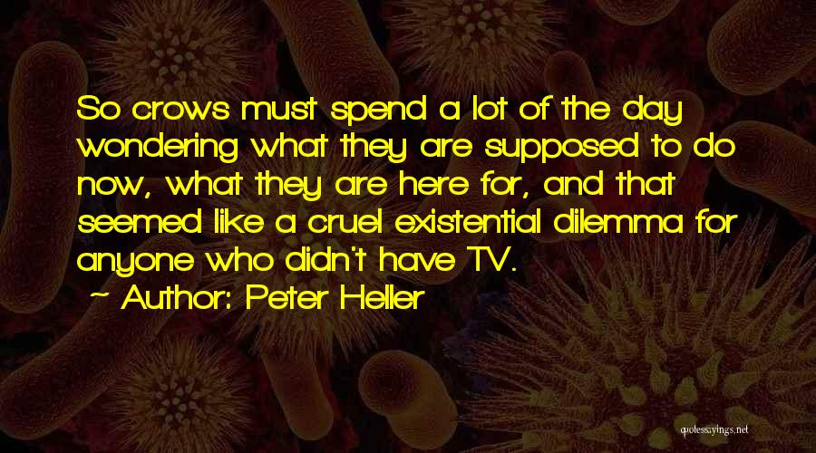 Wondering What To Do Quotes By Peter Heller