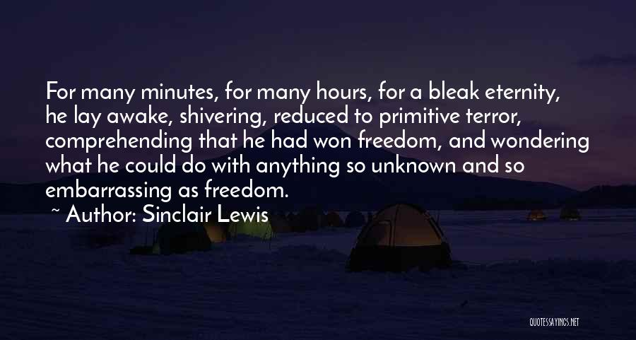Wondering What To Do Quotes By Sinclair Lewis