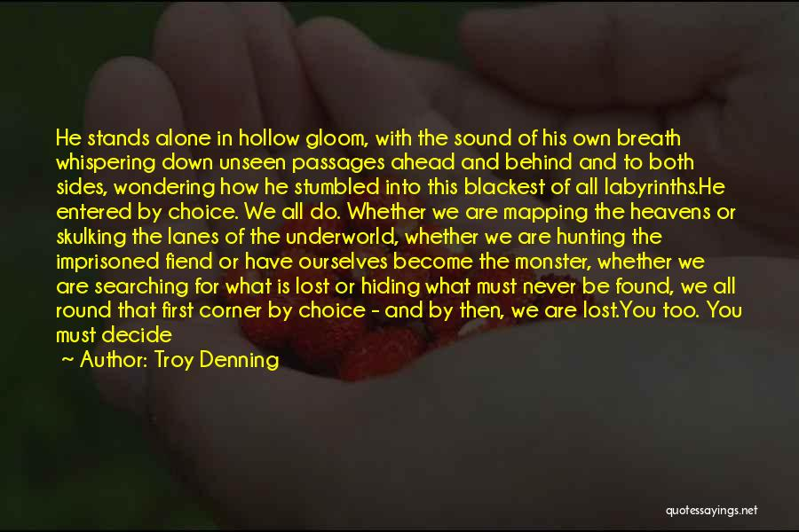 Wondering What To Do Quotes By Troy Denning