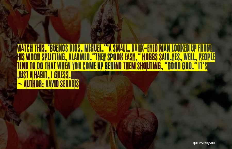 Wood Splitting Quotes By David Sedaris