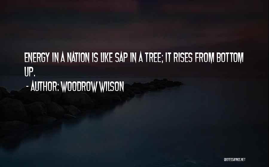 Woodrow Wilson Quotes 1489902
