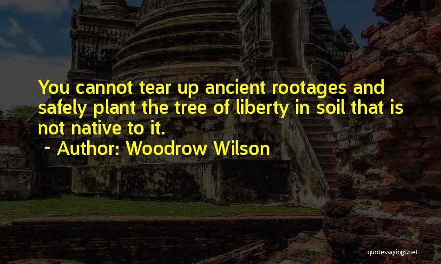 Woodrow Wilson Quotes 765851