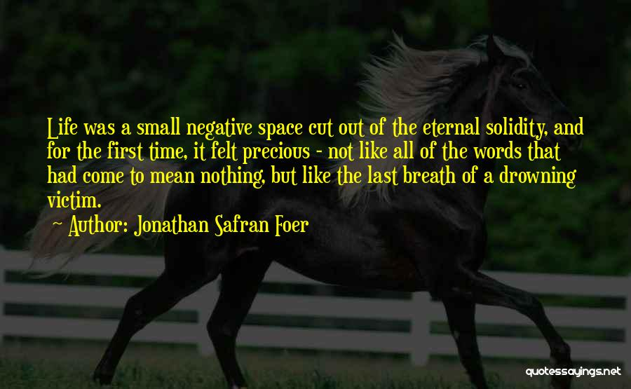 Words Mean Nothing Quotes By Jonathan Safran Foer