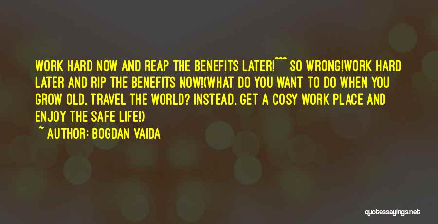 Work And Travel Quotes By Bogdan Vaida