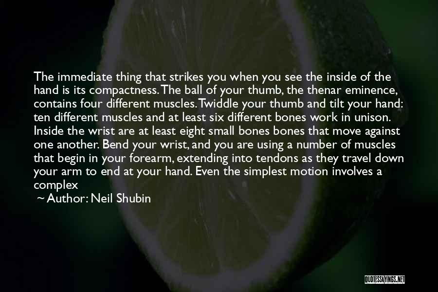 Work And Travel Quotes By Neil Shubin