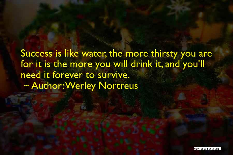 Work Hard You Will Success Quotes By Werley Nortreus