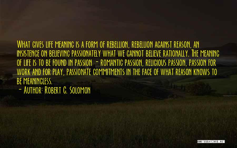 Work Is Passion Quotes By Robert C. Solomon