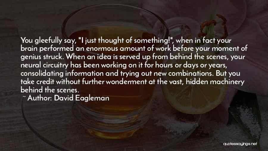 Working Behind The Scenes Quotes By David Eagleman