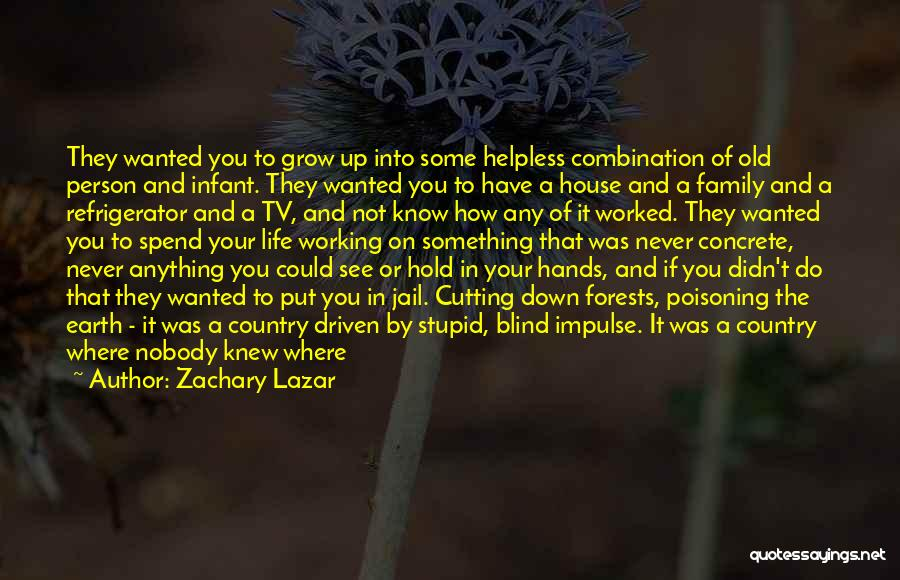 Working For Your Family Quotes By Zachary Lazar