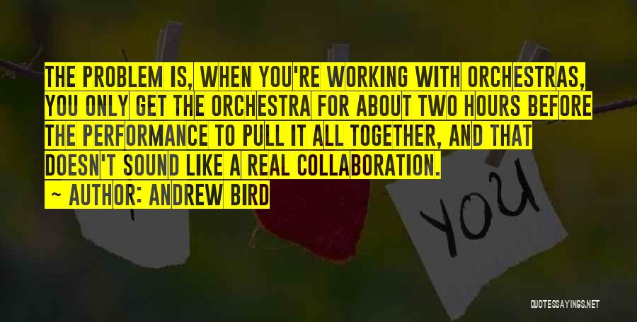 Working Hours Quotes By Andrew Bird