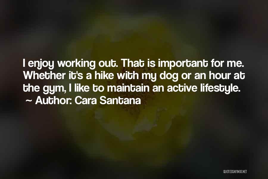 Working Like A Dog Quotes By Cara Santana