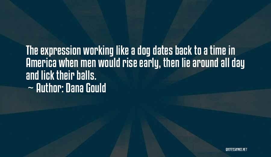 Working Like A Dog Quotes By Dana Gould