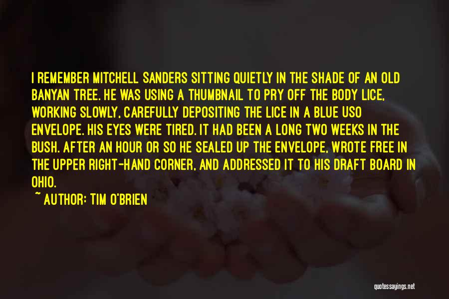 Working Quietly Quotes By Tim O'Brien