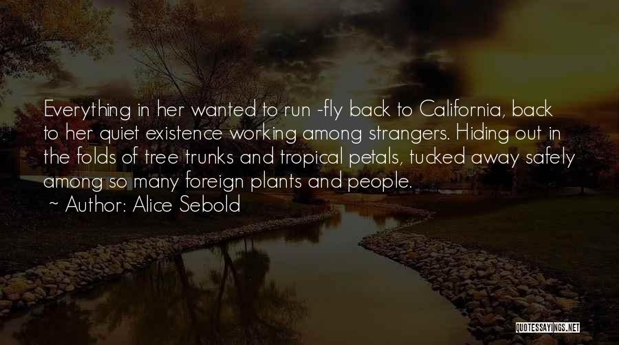 Working Safely Quotes By Alice Sebold