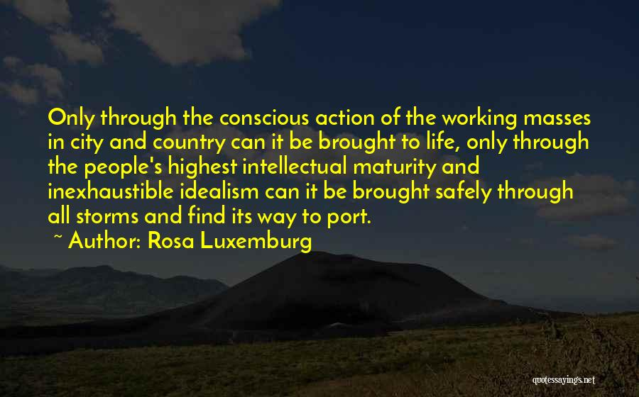 Working Safely Quotes By Rosa Luxemburg