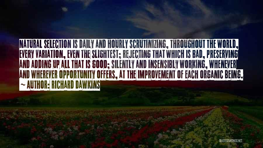 Working Silently Quotes By Richard Dawkins