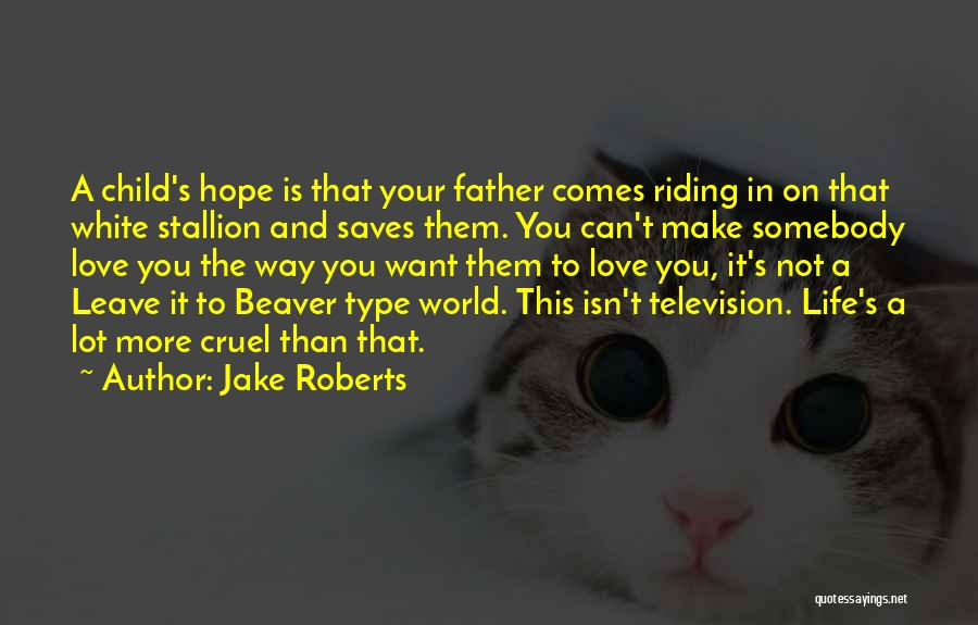 World Cruel Quotes By Jake Roberts