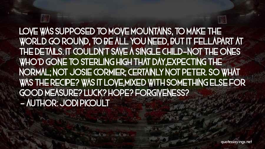 World Go Round Quotes By Jodi Picoult