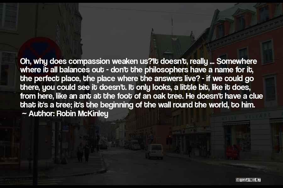 World Go Round Quotes By Robin McKinley
