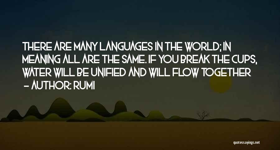 World Languages Quotes By Rumi