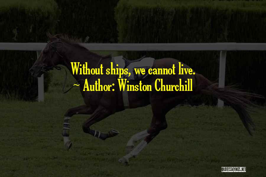World War Z Best Quotes By Winston Churchill