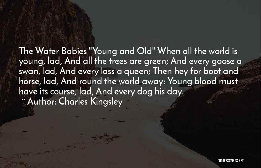 World's Best Horse Quotes By Charles Kingsley