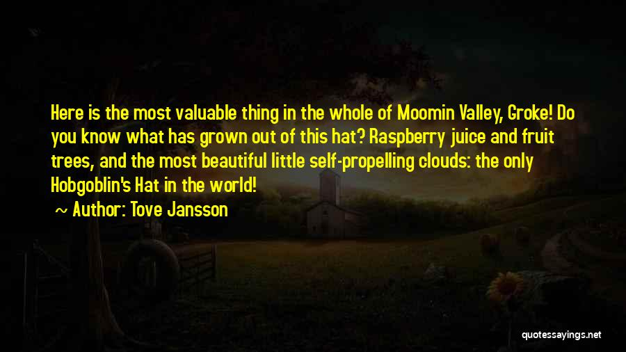 World's Most Valuable Quotes By Tove Jansson