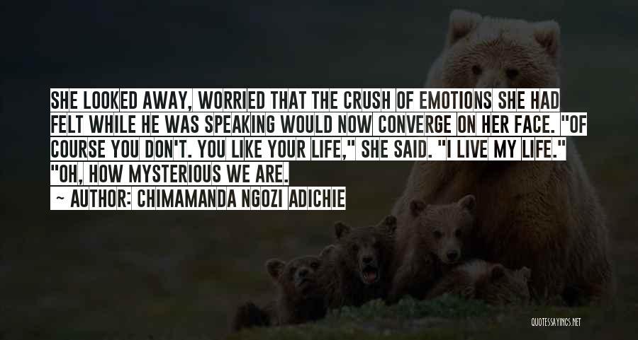 Worried Quotes By Chimamanda Ngozi Adichie